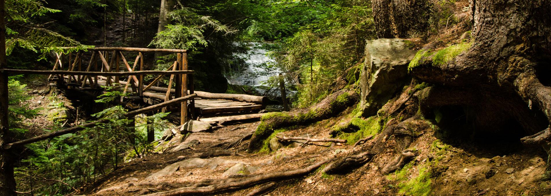 Мост по Каньона на водопадите край Смолян