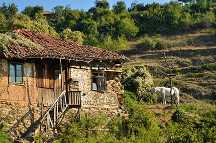 bulgarski-selski-peizaj