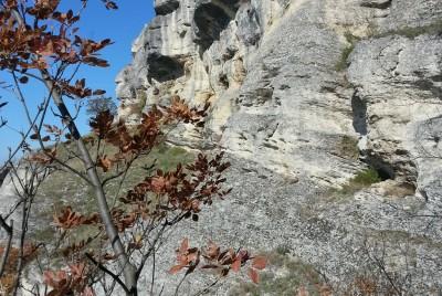 Скали - парк Мадара