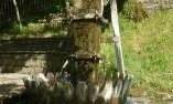 Велявица в Етъра