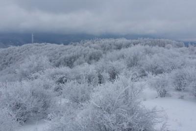 Белите хълмове