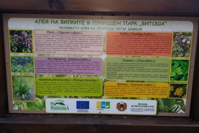 Информационна табела по Алеята на билките във Витоша