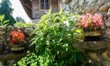 Арбанашки двор