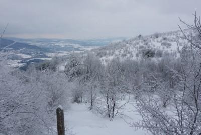 Южна гледка от Дупевица