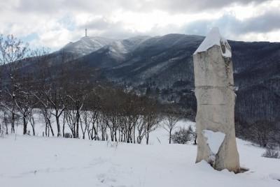 Витоша от местността Кърлежа