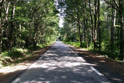 Пътят към село Кости