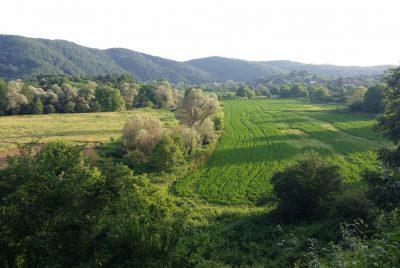 Село Кости