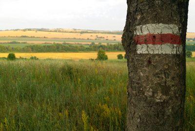 Червената туристическа маркировка