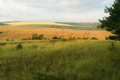 Полски пейзаж