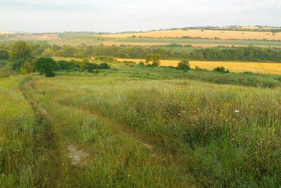 Напред в полята