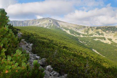 Панорама към връх Дено